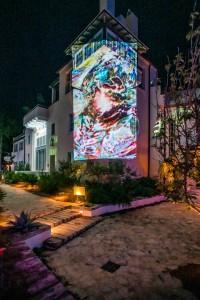 Digital Graffiti Photo 2019